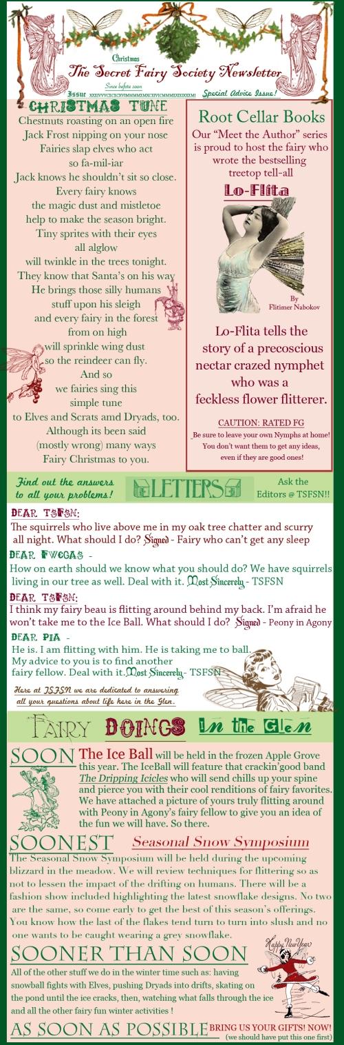 The Secret Fairy Society Christmas Special Advice Edition